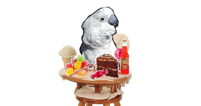 Rich Diet = Naughty Bird